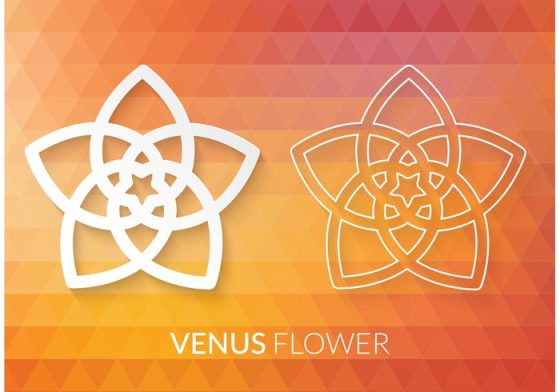 venusflower